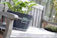 Acacia Wooden Barrel Planter Pot