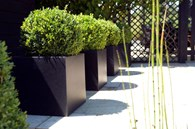 Black Square Planter Various Sizes